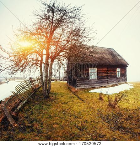 Wooden old house in the mountains and the sun that breaks through the tree in fog weather.