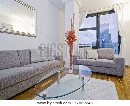 amazing modern living room with bulky sofas and designer coffee table
