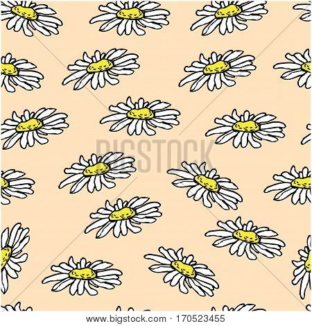 Beautiful white daisy flowers on pink background. Seamless pattern. Could be used for textile web design