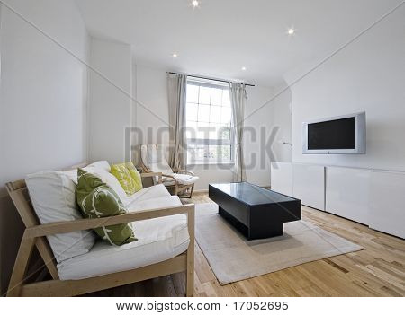living room with budget furniture and decoration