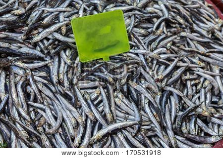 Pile of anchovies with yellow board in the middle.