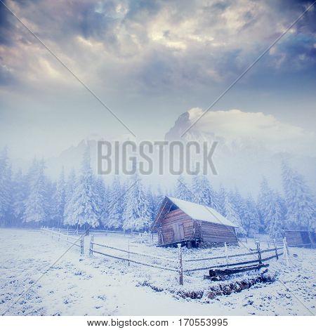 cabin in the mountains in winter. Carpathian Ukraine, Europe
