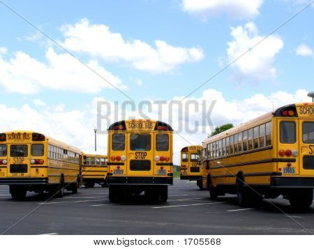 Yellow Buses In A Row