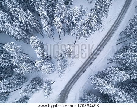 Snowy cold winter forest with bird's eye view