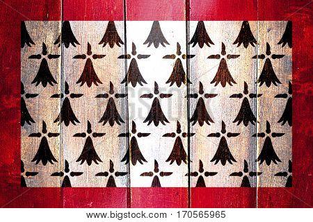 Vintage Limousin flag on grunge wooden panel