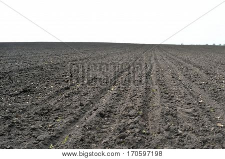 Plowed field of the black earth in spring