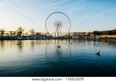 The ferris wheel on Concorde square reflects on the pond water surface in the Tuileries Garden, Paris, France.