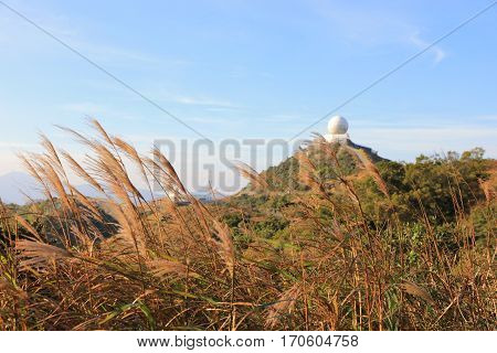 Autumn Landscape On Top Kowloon Peak