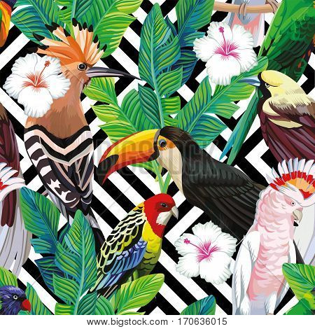 Seamless a composition of tropical bird toucan parrot hoopoe and palm leaves with white hibiscus flowers on black white geometric background