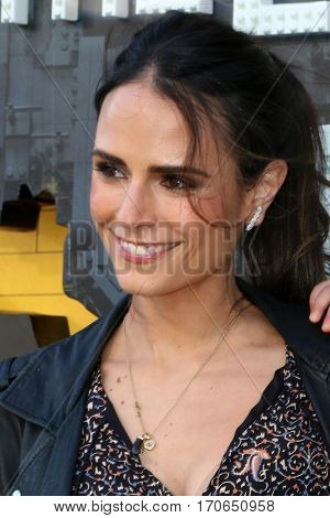 LOS ANGELES - FEB 4:  Jordana Brewster, son at the