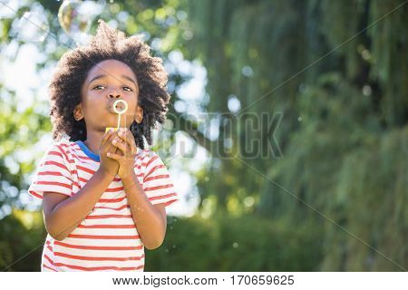 Portrait of boy making bubbles with bubble wand in a park