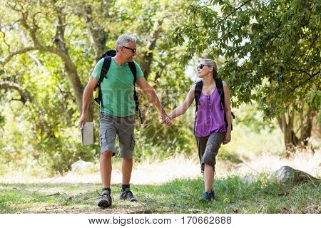 Couple hiking and holding hands each other on the wood
