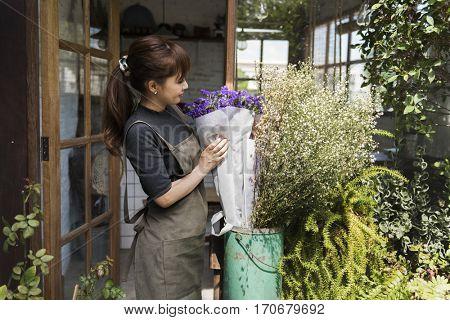 Flower Shop Store Florist Botany Bouquet Blooming