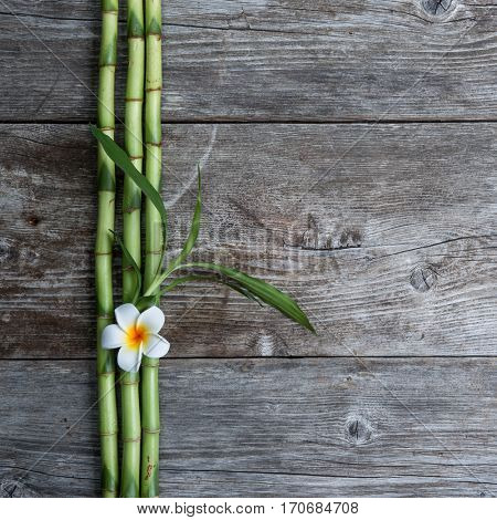 top view frangipani flower and bamboo on the wooden background