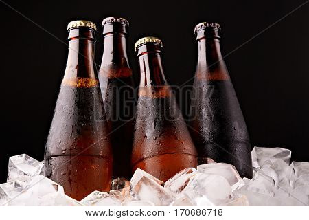 Cold glass bottles with dark and light beer stands in ice cubes on a black background.