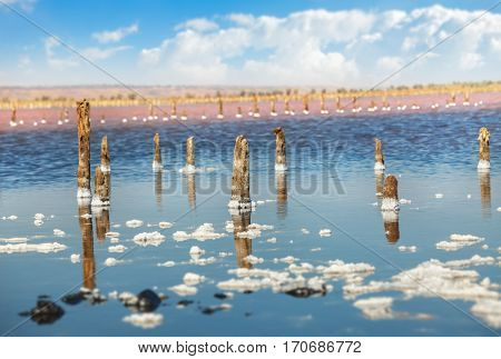 Cloud over water surface of salted sea. Bay blue sky with white clouds