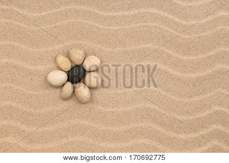 Flower made of stones on the sand dunes. Beauty and harmony.