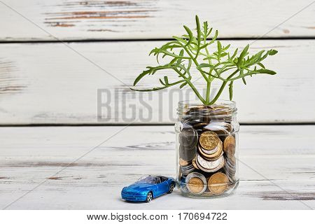 Tree and coins in container. Financial growth journey