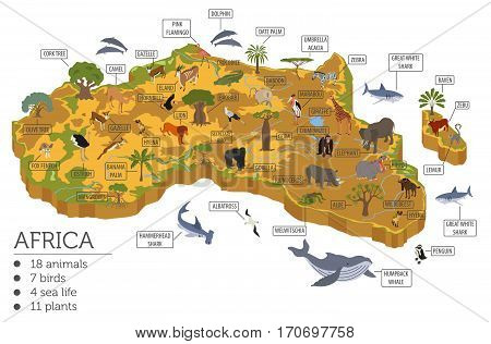 Geography Isometric Africa_10