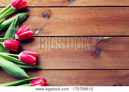 flora, gardening and plant concept - close up of red tulip flowers on wooden table with copy space