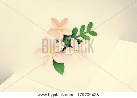 Handmade Papercraft Flowers Isolated Art
