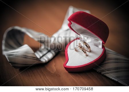 Groom wearing bow-tie holding wedding rings in ring box