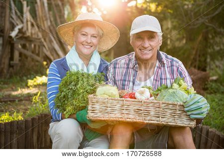 Portrait of happy mature couple carrying fresh vegetables crate at garden