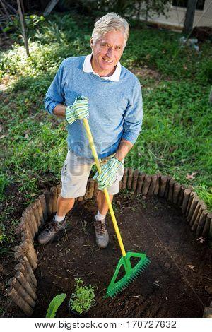 Portrait of happy mature male gardener using rake at garden