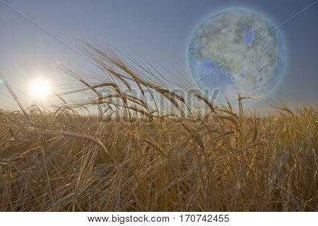 Terraformed Luna seen from field on earth  Some elements provided courtesy of NASA