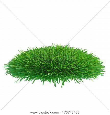 green grass meadow. plants lawn. 3d rendering