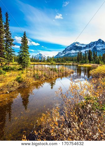 Shallow marshy lake in the Rocky Mountains. The mountains are covered in the snow. Autumn in Canada.  The concept of ecotourism