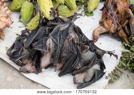 Bats At Market