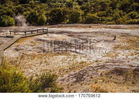 Orakei Korako geothermal valley
