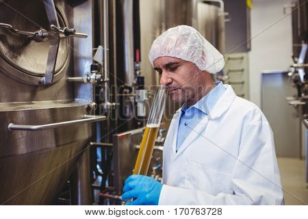 Male manufacturer examining beer in test tube at brewery