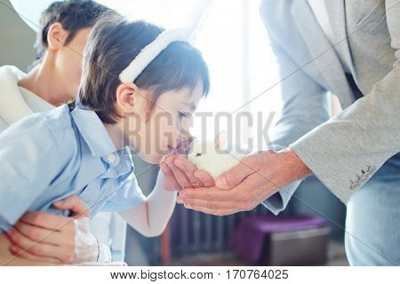 Little boy bending towards fluffy pet held by father