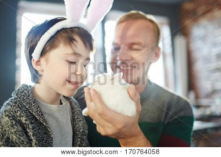 Boy with rabbit ears looking at small fluffy bunny