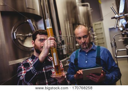 Owner inspecting beer in tube with worker at brewery
