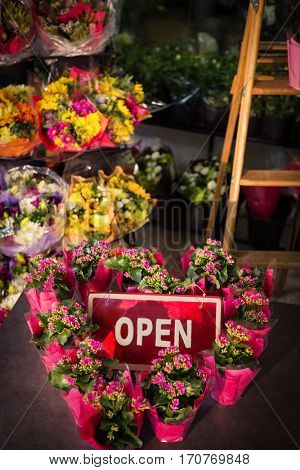 Close-up of open signboard decorated with heart shape plant pots at flower shop