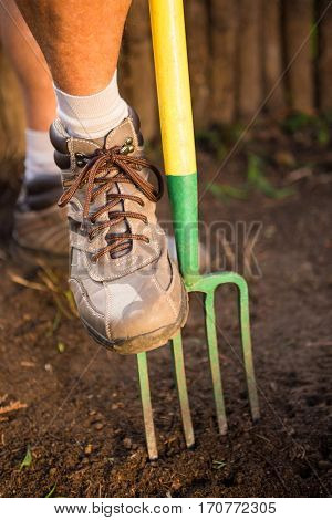 Low section of male gardener stepping on fork in dirt at bontanical garden