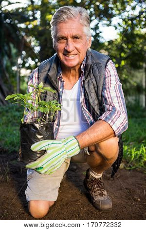Portrait of happy mature male gardener kneeling with potted plant at garden