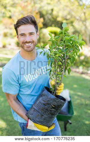 Portrait of volunteer man holding plant in park