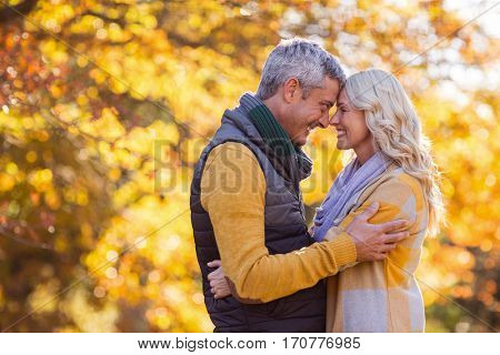 Side view of romantic couple standing face to face at park during autumn