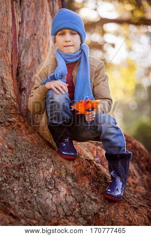 Portrait of boy holding pinwheel while crouching on tree trunk at park