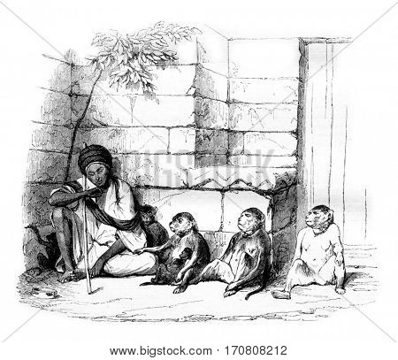 A Merchant of monkeys in Cairo, vintage engraved illustration. Magasin Pittoresque 1844.