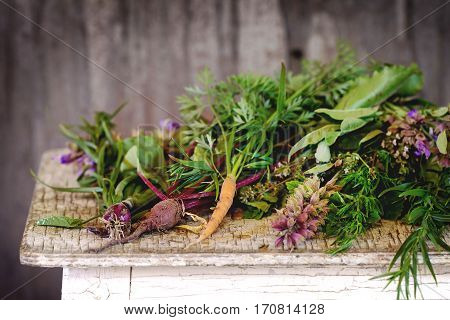 Herbs And Vegetables
