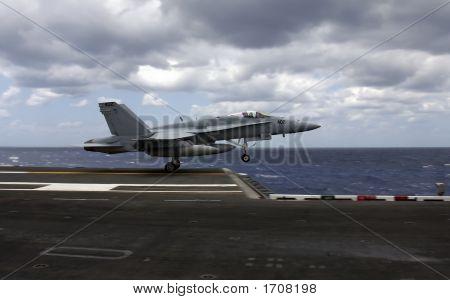 Hornet Takes Flight