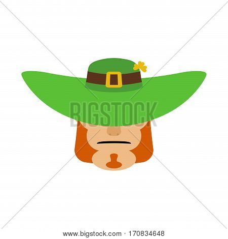 Leprechaun In Green Hat Face. Head With Red Beard. Portrait For St. Patricks Day Celebration In Irel