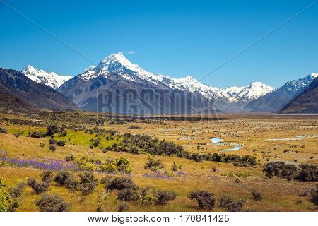 Landscape View Of Meadows And Mt Cook Mountain Range, Nz