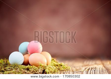 Pastel Colored Easter Eggs On Moss