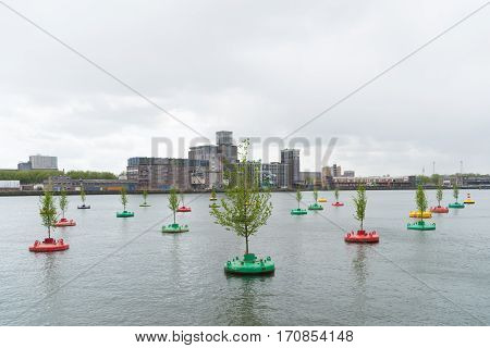 ROTTERDAM NETHERLANDS - MAY 14 2016: Small elm trees on re-used buoys in the rotterdam Rhine harbor. It is a concept of Jeroen Everaert founder of Mothership based on the artwork 'In Search of Habitus' by artist Jorge Bakker.